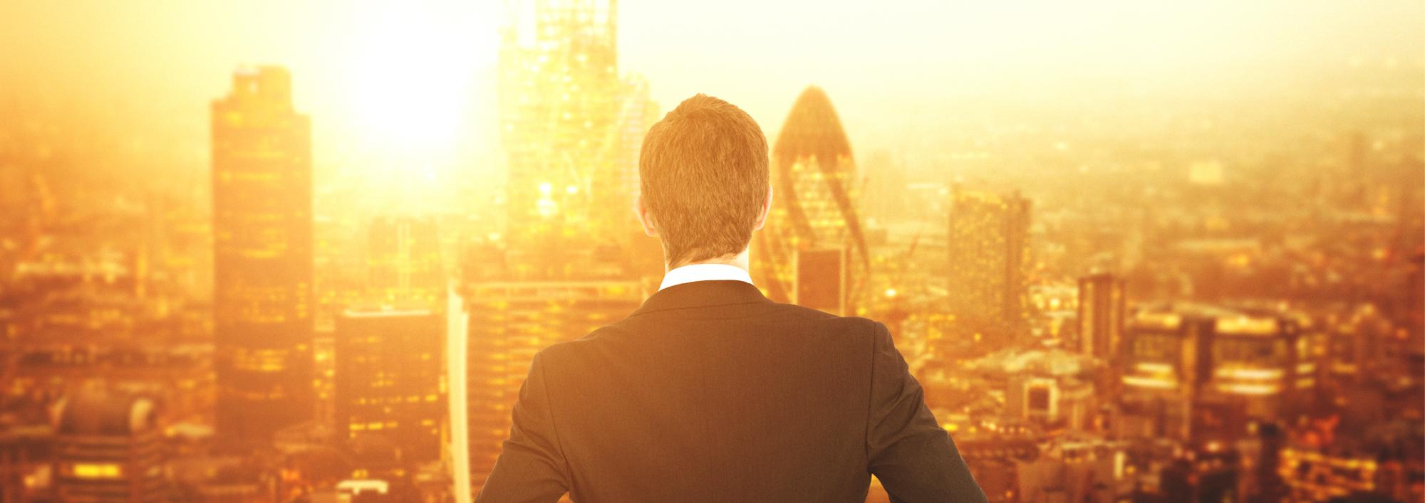 Expert Opinion, Portfolio, Wealth Management